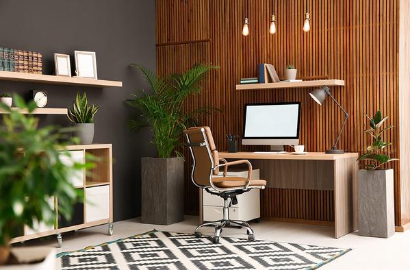 phong cách nội thất eco